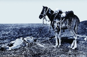 A cavalry horse stands over the body of its rider - from the book The War Horses, which shows the reality behind the animals forgotten in World War I